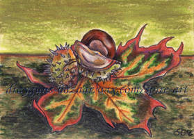 Chestnut ACEO by De-Vagrant