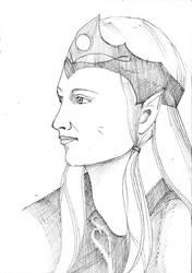 LARP character portrait of an elf by Amalias-dream