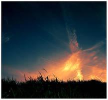 phoenix rising- by thephotogenesis