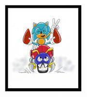 Sonic : Motobug Rider by funkyjeremi