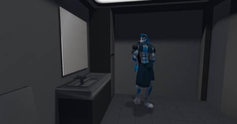 Starfleet Admiral Shadow Admiring by shadowwolf34965