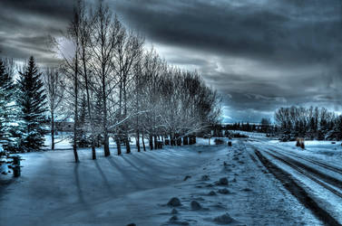 Winter by Snapperz