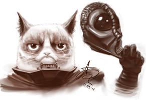 Darth Grumpy by SHARK-E