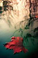 give me November by emeraldiris