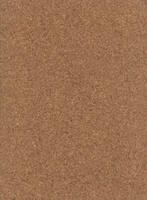 corkboard texture by chokingonstatic