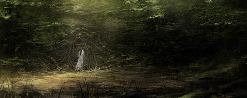 Into the Forest by ChrisCold