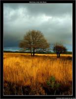 Waiting for the Rain by sandervandenberg