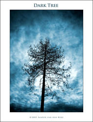 Dark Tree by sandervandenberg