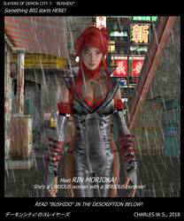 Slayers of Demon City 7:  Bushido by CharlesWS