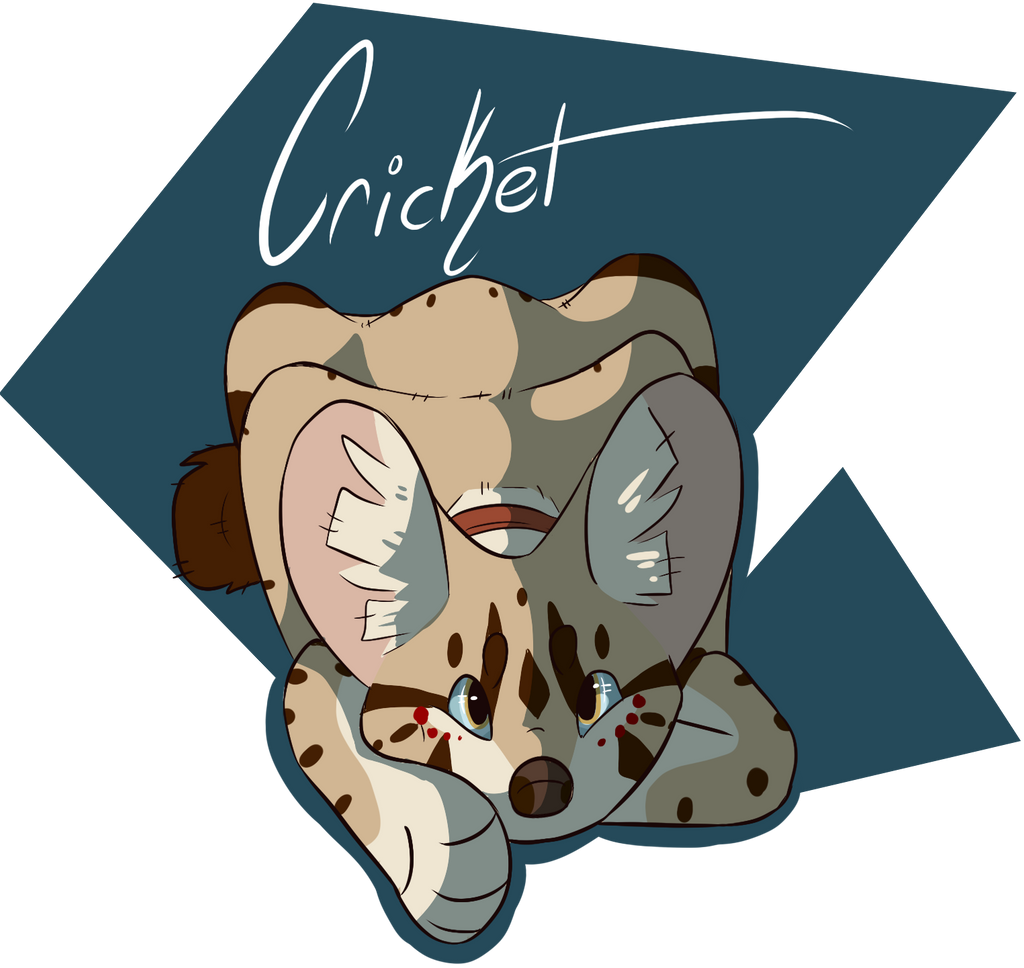 Owl-Flight's Profile Picture