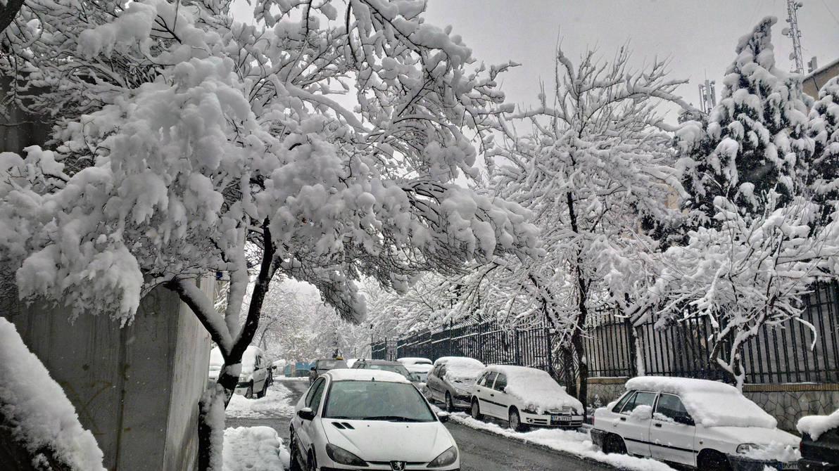 Snowy Day by linkorn90