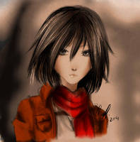 Mikasa Sketch by screamingsnake
