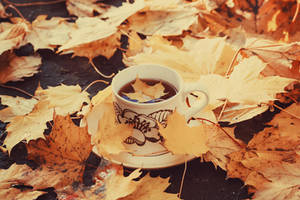 Autumn Leaf Tea II by VelvetRedBullet