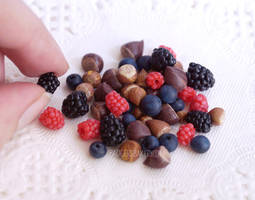 Tiny berries and nuts by BadgersBakery