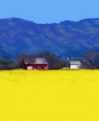 Yellow field of... Yellowness by Shamdu