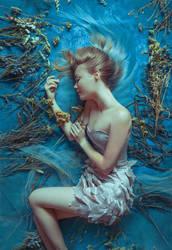 Mermaid's Dreams by Helea1