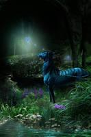 Imagination by Cascade--Studios