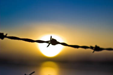 Barbed Wire by GeorgeAmies