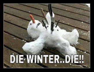 DIE WINTER...DIE!! by msteeq