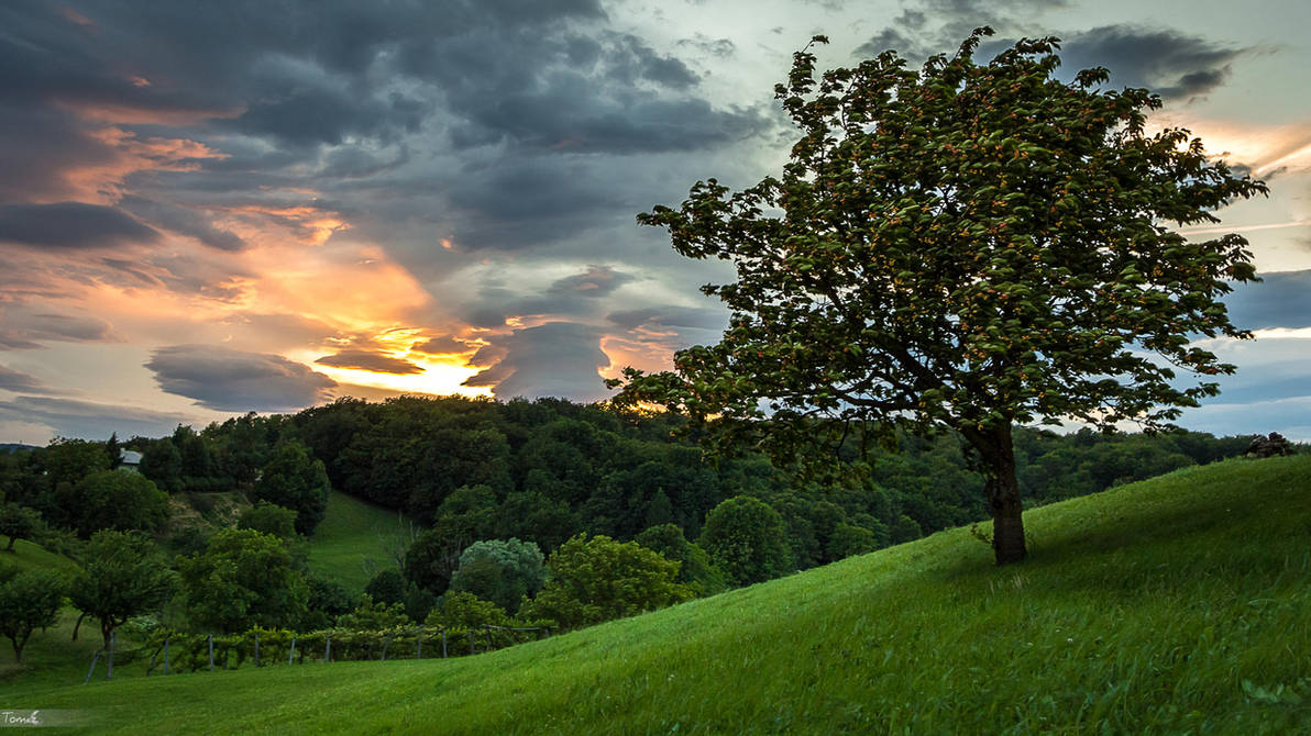 After the storm by TomazKlemensak