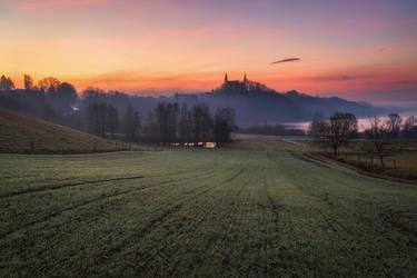 On the field by TomazKlemensak