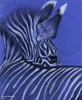 Zebra by shemerina
