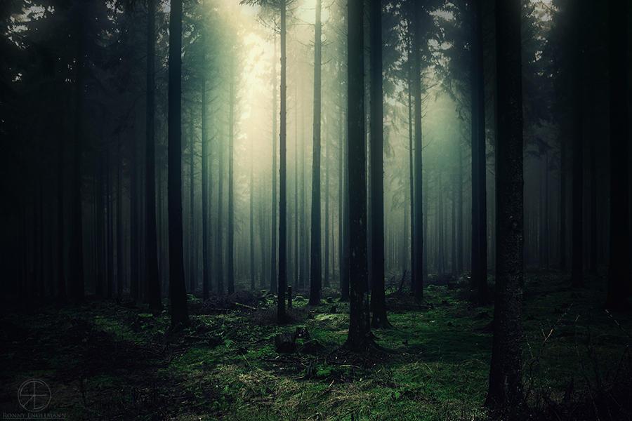 gloomy silence by RonnyEngelmann