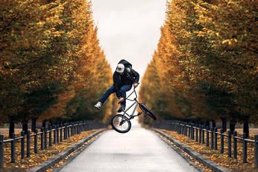 Alley Whip by RonnyEngelmann
