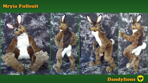 Mryia BodySuit Final by DandylionsLLC