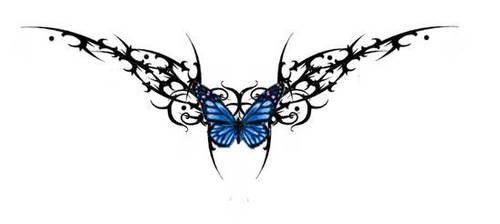 tattoo butterfly by butterfly17