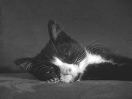 The Sleeper by euppis
