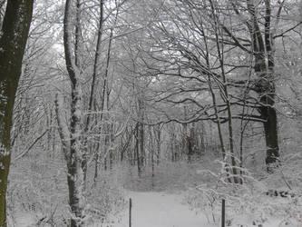 Beckett Snow 1 by PlatinumRobert