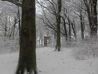 Snowy Gateway by PlatinumRobert