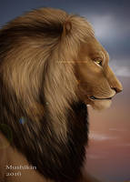 Lion by Rakuens