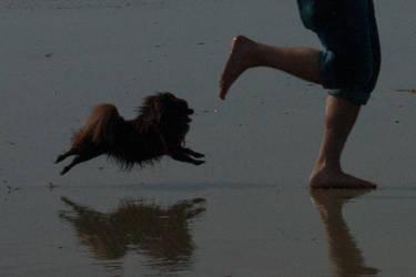 Full tilt- Flying Super Moose! by hotwiar