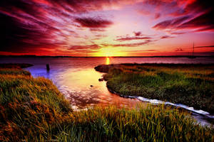 Aldeburgh Wetland 5 by Wayne4585