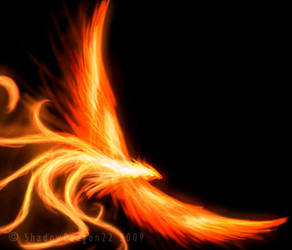 Phoenix of Flames by ShadowDragon22