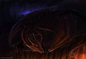 Staring into the fiiireeeee by ShadowDragon22