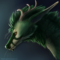 Commission - Tide by ShadowDragon22