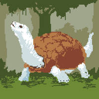 29-White Tortoise by Geminimax