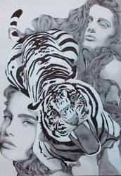 Tigre by CarolCuibin