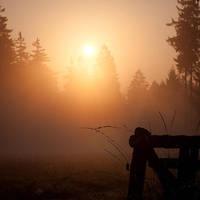 Am Morgen by Noirerora