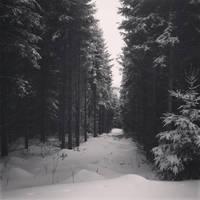 Winter memories by Noirerora