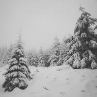 Brockenwanderung by Noirerora
