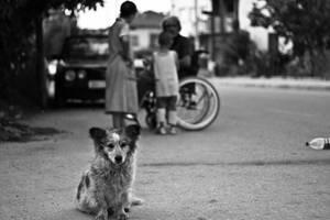 poverty by mario19