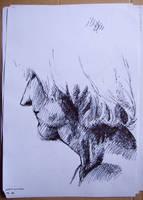 portrait by swinbox