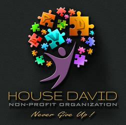House David  LOGO by IosifChezan