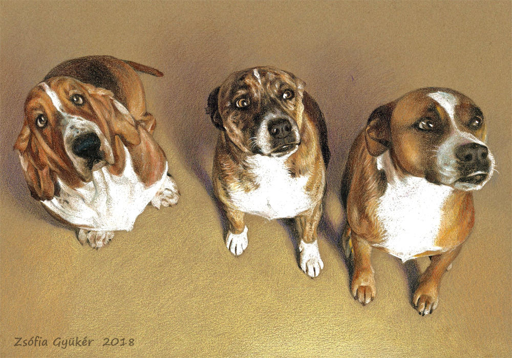 Three Dogs commission by ZsofiaGyuker