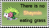 There is no Shaymin by GhettoSketchah