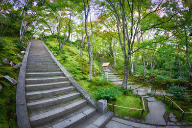The Endless Stairs of Jojakkoji by Caenwyr